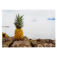 Cuadro-Tropicalia-50-70Cm-Acrilico--------------------------
