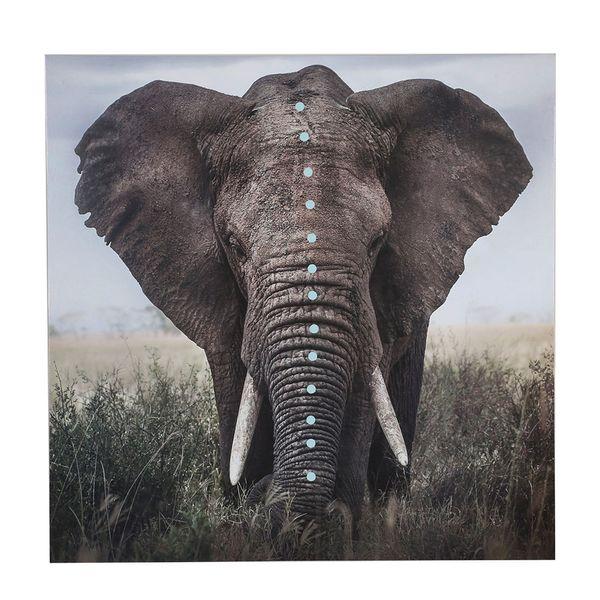 Cuadro-Elephant-60-1-60Cm-Mdf-Cv----------------------------