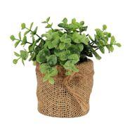 Planta-Artificial-Hojas-10-10-15Cm-Plastico-Matera-Yute-----