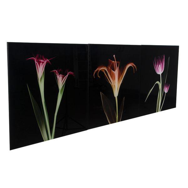 Set-3-Cuadros-Luminescent-Flowers-50-50Cm-Acrilico----------
