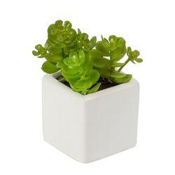 Planta-Artificial-Minisuculenta-10Cm-Metal-Tela-Blanco-Verde