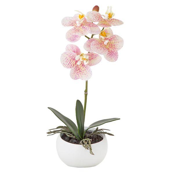 Planta-Artificial-Orquidea-25Cm-Rosa-Crema-Ceramica-Blanco
