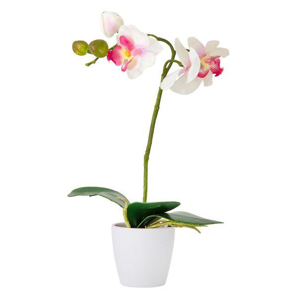 Planta-Artificial-Orquidea-Surt-28Cm-Plastico-Blanco-Varios-