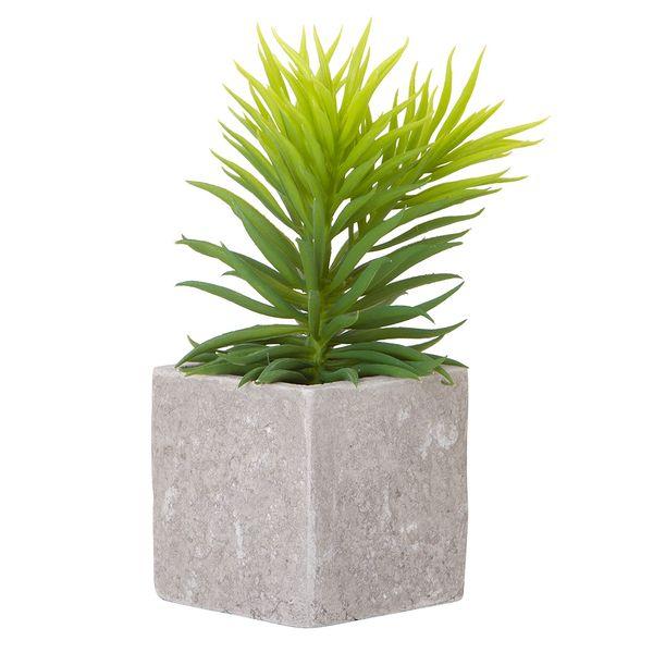 Planta-Artificial-Suculenta-Surt-14-20Cm-Cemento-Gris-------