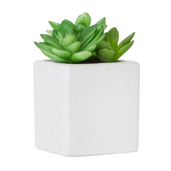 Planta-Artificial-Minisuculenta-Surt-12-18Cm-Ceramica-Blanco