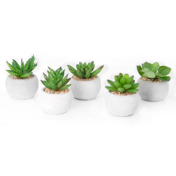 Planta-Artificial-Minisuculenta-Surt-6Cm-Ceramica-Arena-----