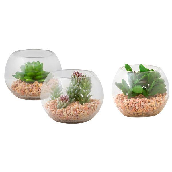 Planta-Artificial-Minisuculenta-Surt-9Cm-Vidrio-Trans-------