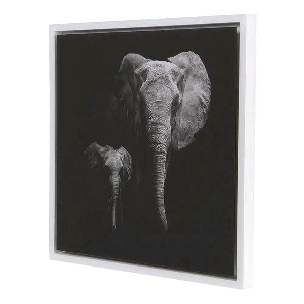 Cuadro-Elefantes-Life-63-63Cm-Canvas-Flotante-Blanco-Negro--