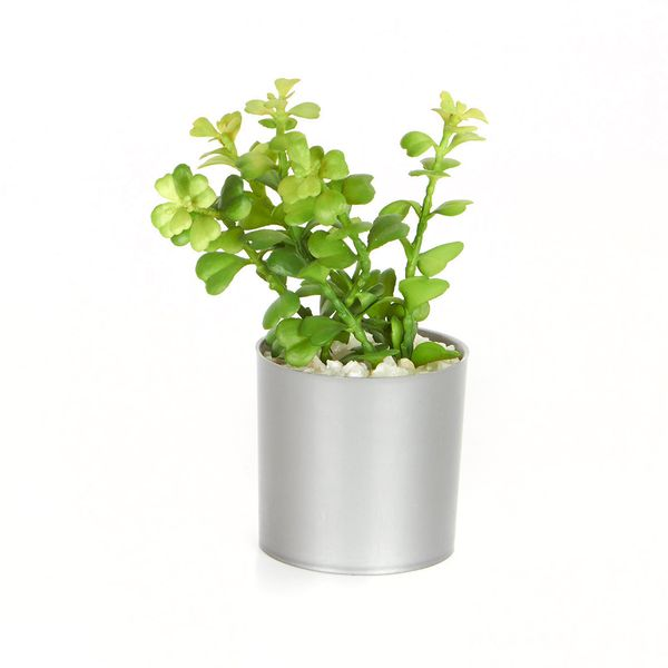 Planta-Artificial-Cage-Con-Matera-Plastico-Cv---------------