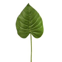 Hoja-Artificial-Philo-21-25-63Cm-Plastico-Verde-------------