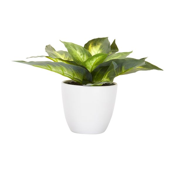 Planta-Artificial-Tropical-15-25Cm-Plastico-Blanco----------