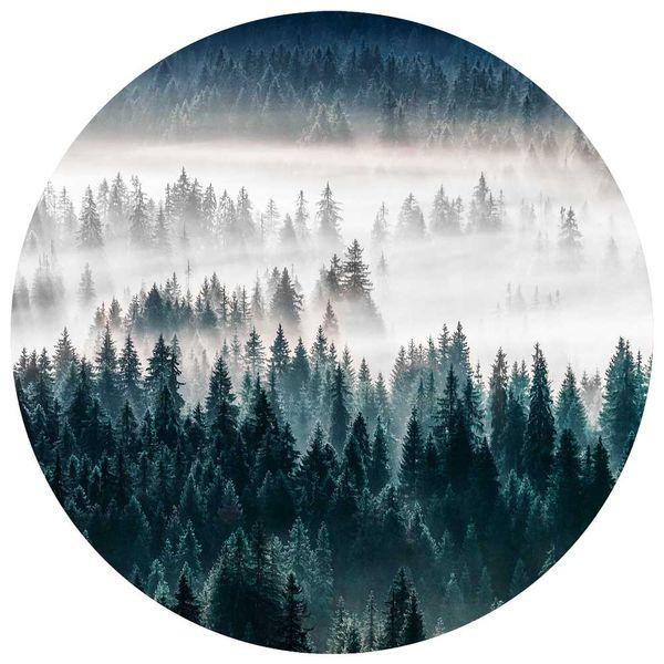 Cuadro-Circular-Forest-70-70Cm-