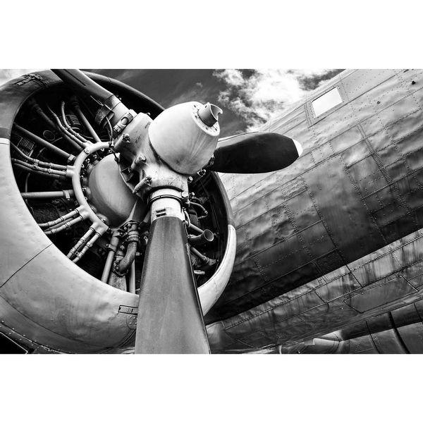 Cuadro-Silver-Plane-85-113Cm-Canvas-Silver------------------