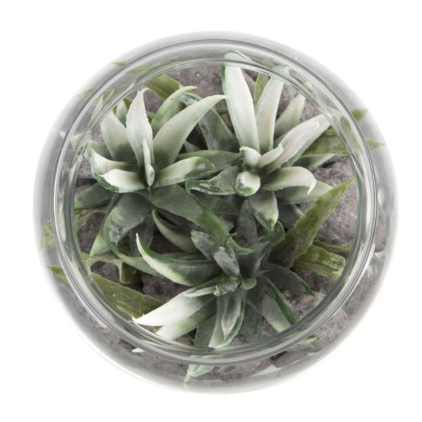 Planta-Artificial-Bonsai-Selva-12.5-16Cm-Vidrio-------------