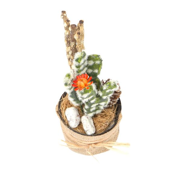 Planta-Artificial-Bonsai-Cactus-6-14Cm-Yute-----------------