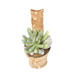 Planta-Artificial-Bonsai-Suculenta-6-14Cm-Yute--------------