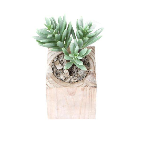 Planta-Artificial-Bonsai-Suculenta-6.5-7.5Cm-Madera---------
