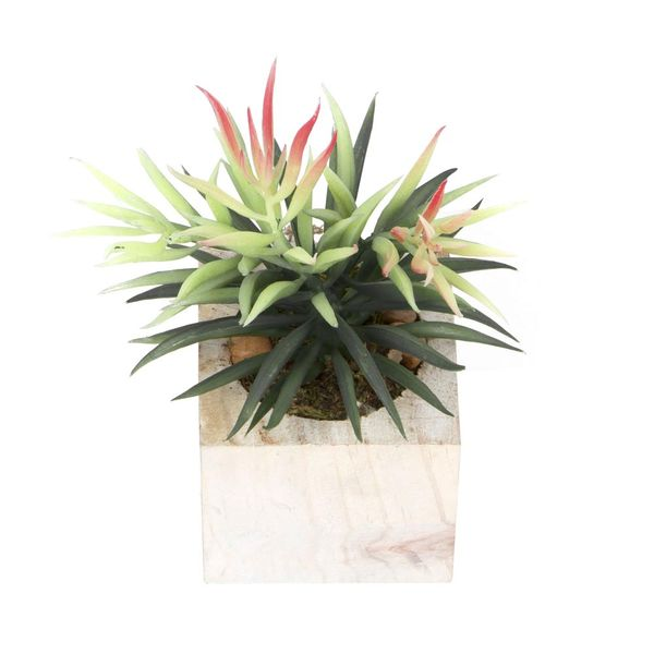Planta-Artificial-Bonsai-Puya-8.5-9Cm-Madera----------------