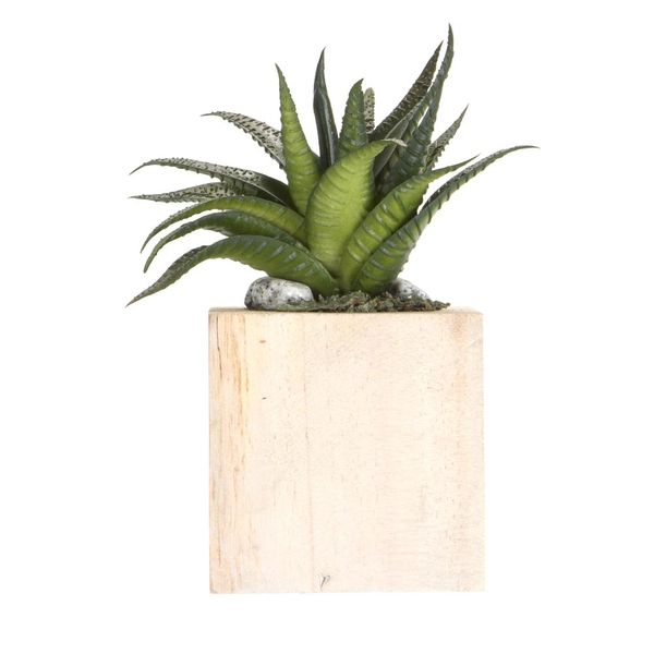 Planta-Artificial-Bonsai-Aloe-8.5-9Cm-Madera----------------