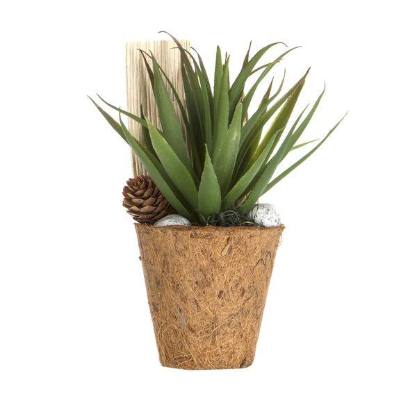 Planta-Artificial-Bonsai-Suculenta-8-19Cm-Fibra-Coco--------