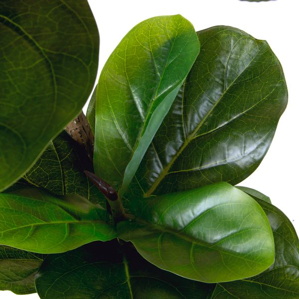 Planta-Artificiall-Alta-Ficus-46x132Cm-Verde