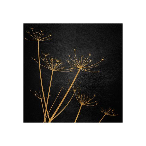 Cuadro-Hogweed-50-50Cm-Canvas-------------------------------