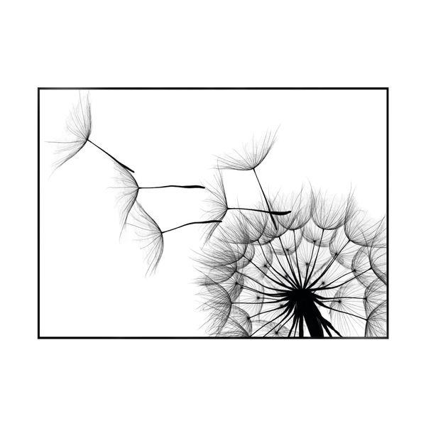 Cuadro-Dandelion-50-70Cm-Papel-Marco------------------------