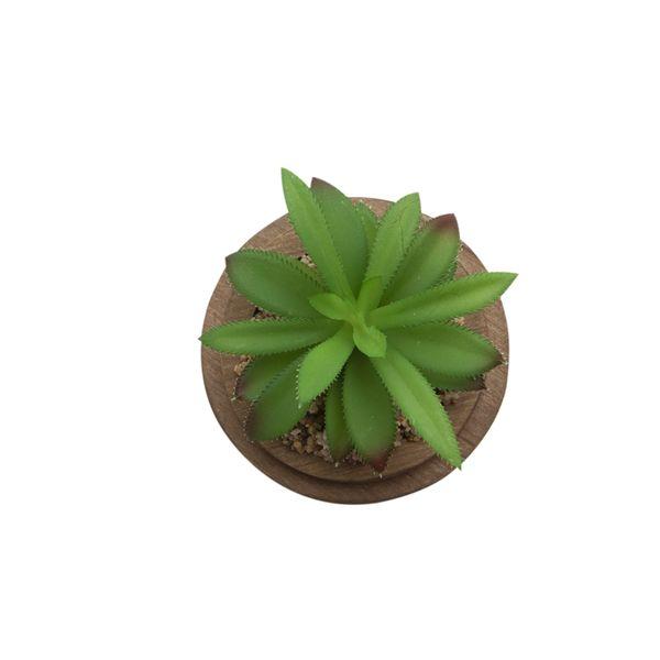 Planta-Artificial-Urna-Penca-11-11-13Cm-Vidrio--------------