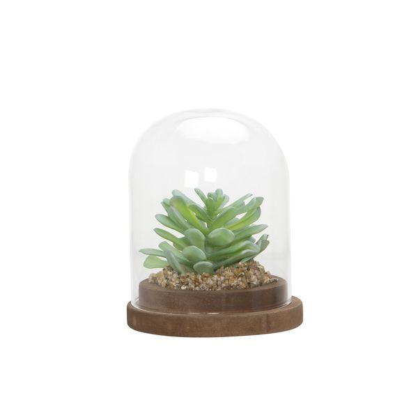 Planta-Artificial-Urna-Suculenta-11-11-13Cm-Vidrio----------