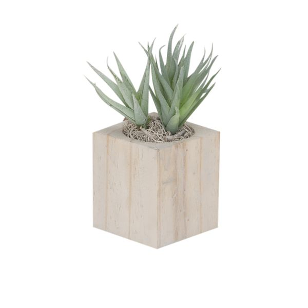 Planta-Artificial-Bonsai-Aloe-6.5-7.5Cm-Madera--------------