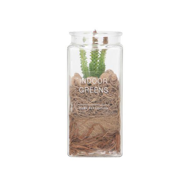 Planta-Artificial-Bonsai-Desierto-10-24Cm-Vidrio------------