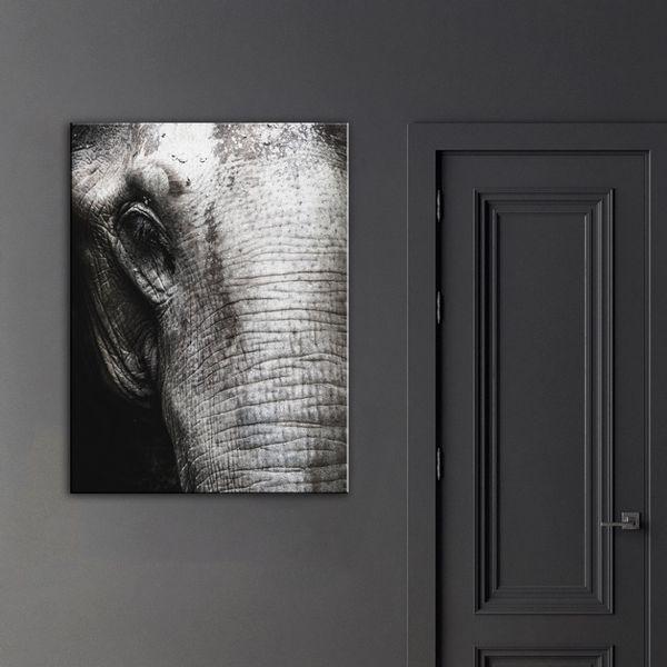 Cuadro-Elephant-Skin-75-100Cm-Canvas-Silver-----------------