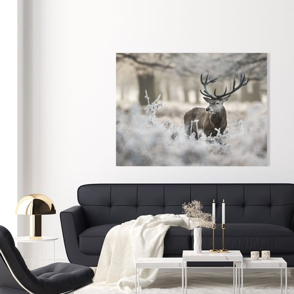 Cuadro-Winter-Deer-85-113Cm-Canvas-Silver-------------------