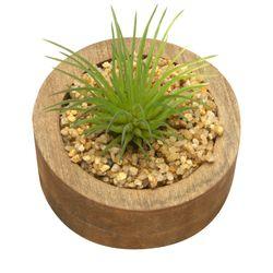 Planta-Artificial-Wood-Aloe-7.4-2.7Cm-Mdf-Plastico----------