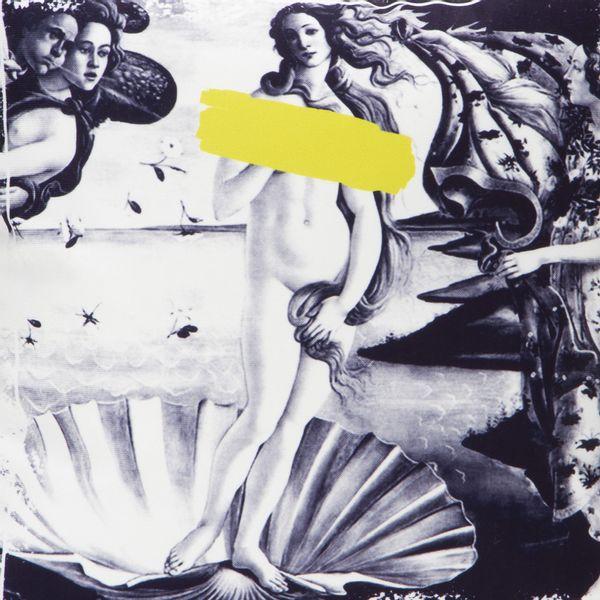 Funda-Cojin-Venus-45-45-Cm