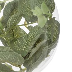 Portavela-Redondo-Eucalyptus
