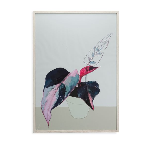 Cuadro-Artistico-Bodegon-Contemporaneo