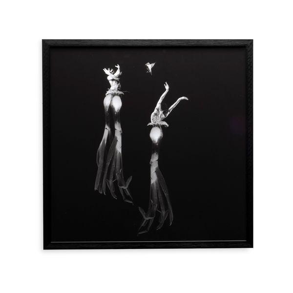 Cuadro-Artistico-Utopia-Postnatural-II