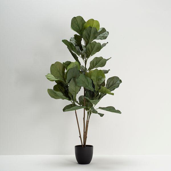 Planta-Artificial-Alta-Ficus-Pandurata-100Cm-Negro