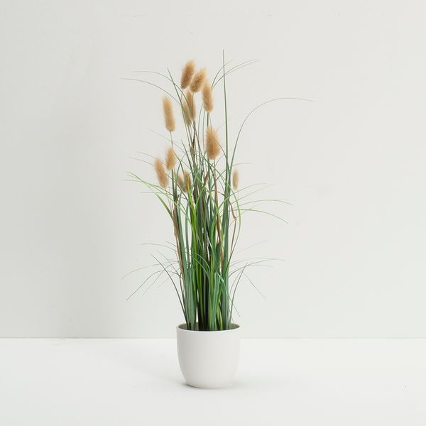 Planta-Artificial-Grass-50Cm-Blanco-Cafe