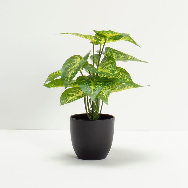 Planta-Artificial-Greenery-Surt-30Cm-Negro