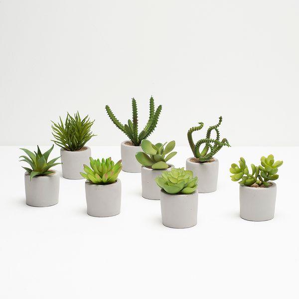 Planta-Artificial-Suculenta-Surt-9-15Cm-Concreto-Blanco