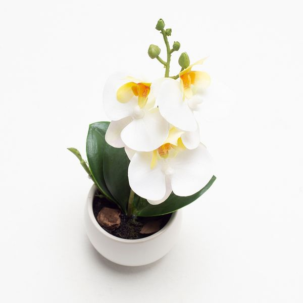 Planta-Artificial-Orquidea-16Cm-Crema-Blanco