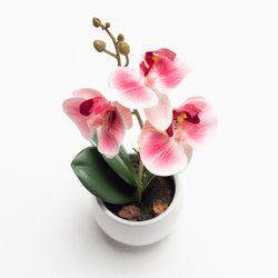 Planta-Artificial-Orquidea-16Cm-Rosa-Blanco-Blanco