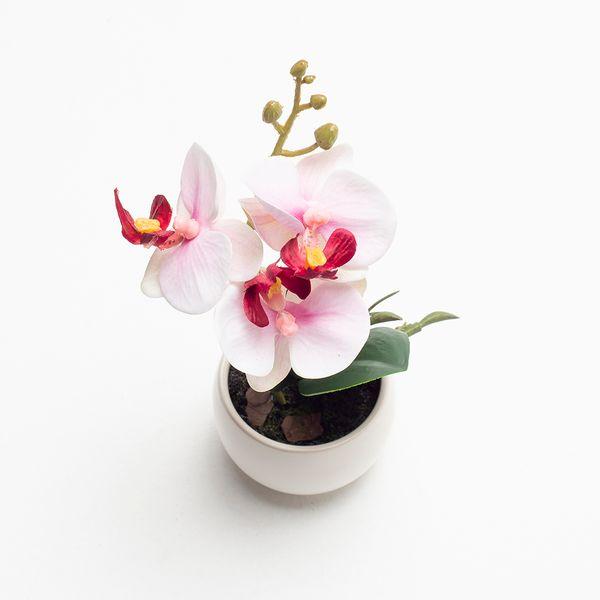 Planta-Artificial-Orquidea-16Cm-Blanco-Rosa-Blanco