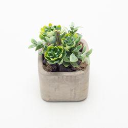 Planta-Artificial-Bonsai-Echeveria-7-12Cm