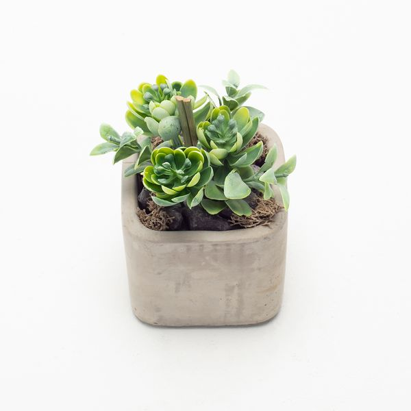 Planta-Artificial-Bonsai-Echeveria-7-12Cm
