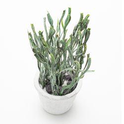Planta-Artificial-Bonsai-M-Palma-10-25Cm