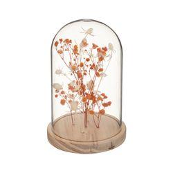 Campana-Con-Flores-Blume-Surtido