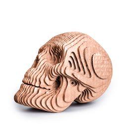 Figura-Decorativa-Skull-16-16-22Cm-Carton-Oro-Rosa